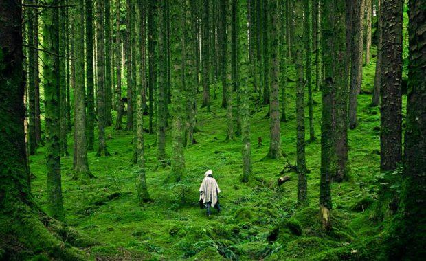 Natria weed killer may help the environment.